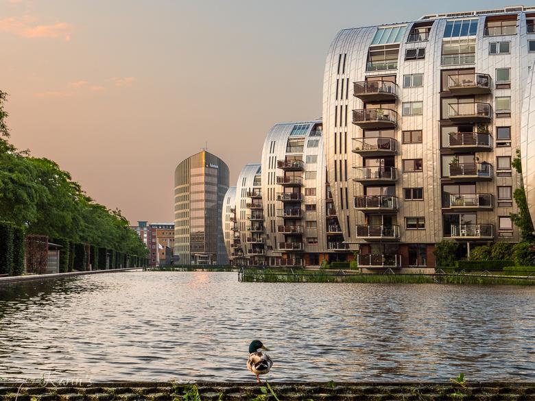 Paleiskwartier 's-Hertogenbosch - Het Paleiskwartier in Den Bosch is een mooie locatie voor architectuurfotografie
