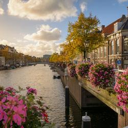 Alkemadebrug Leiden