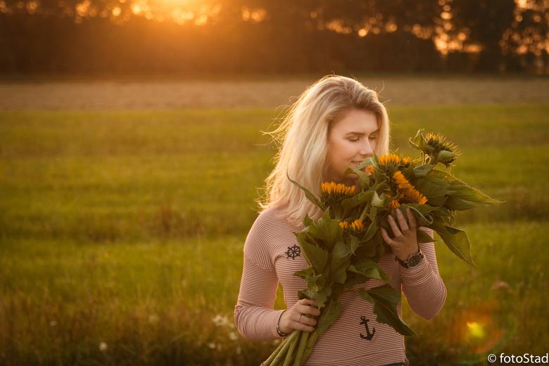 Sunflowers in sunset - natuurlijk licht bij ondergaande zon