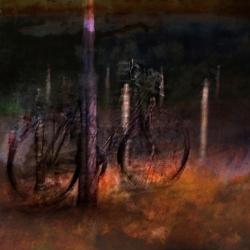 War diese Nacht in Berlin der Fotograf betrunken oder das Fahrrad?