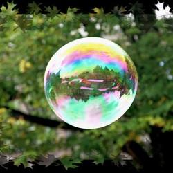 Hoorn gevangen in een zeepbel
