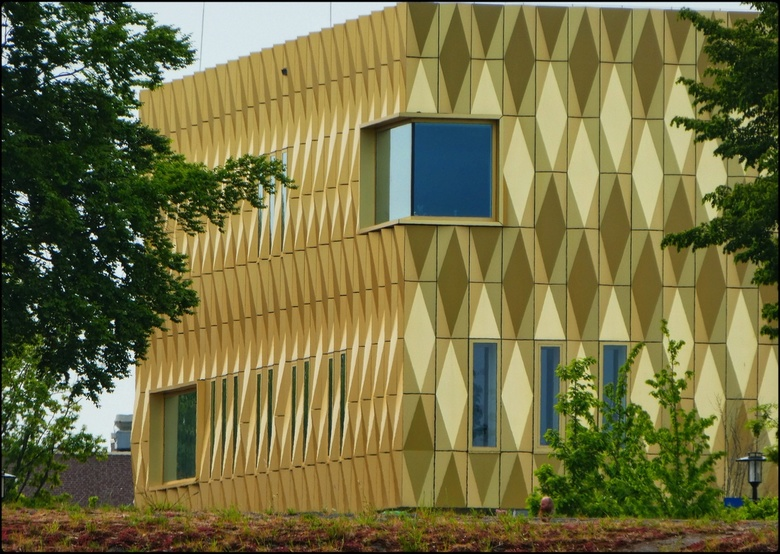 Gold Building -