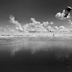 Surf's up...