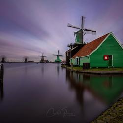 Windmill delight