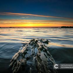 Langs de randmeren van Flevoland