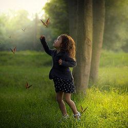fly the butterflies