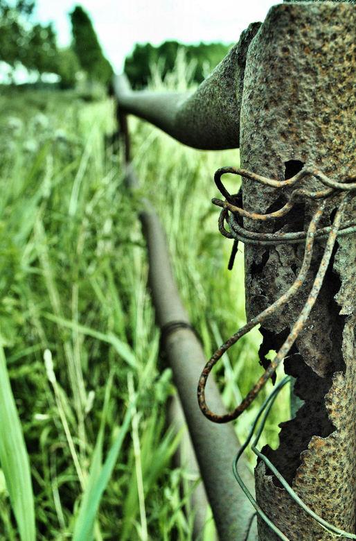 Verroest hek - Soms vind je wat je niet zoekt. Vandaag op zoek naar het zomergevoel op het 'groene' industrieterrein Euvelgunne bij Groninge