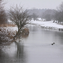 winter in de AWD