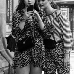 Two Leopards in Amsterdam