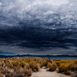 Mono lake skies