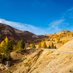 Alpen in herfstkleuren,,,,