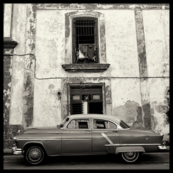 American Car II Havanna