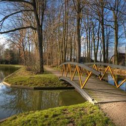 De Cannenburgher bos (HDR)
