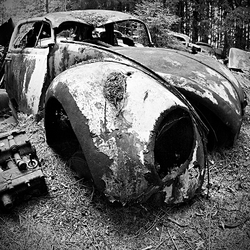 car graveyard 19