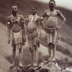 Pokaja Tribe PNG