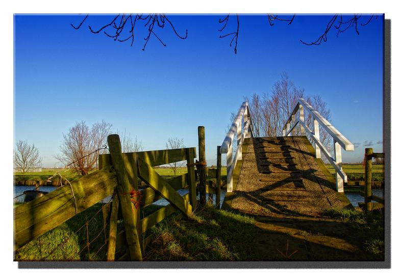 Kwakeltje... - ... aan het eind van het Doelpad in Maasland op een mooie maar koude december namiddag.