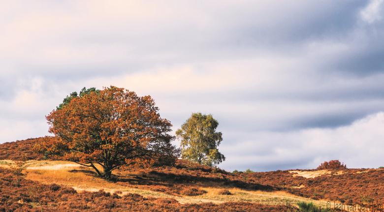 Posbank Autumn  -