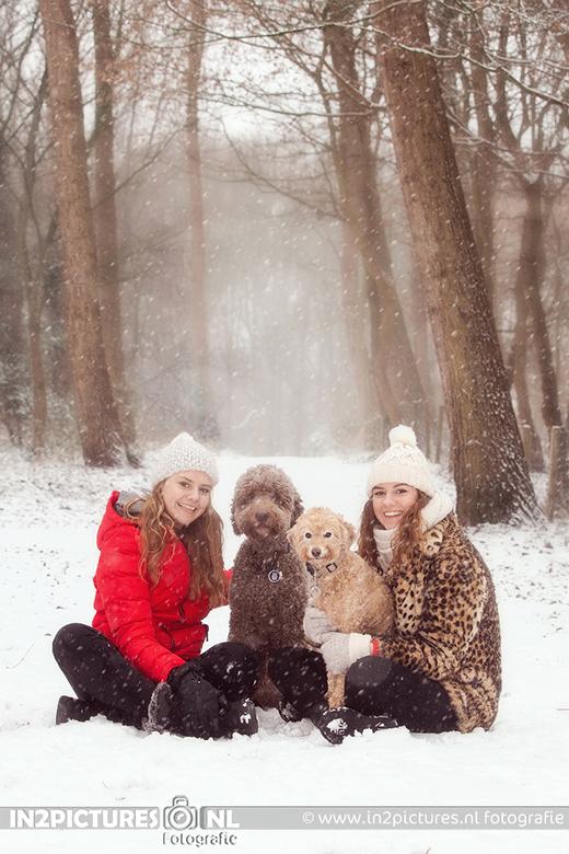 Familieportret - Als het dan een keer voorkomt dat het sneeuwt in Nederland en er dan ook nog tijd is om met je kinderen en honden op pad te gaan dan