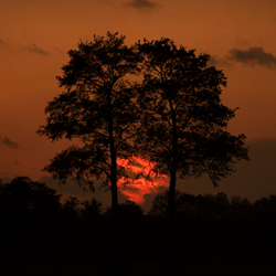 Sunset Beekbergen