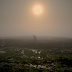 Kokkel & Mossel jacht in de mist
