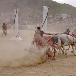 paardenraces 2