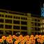Bloemenpracht bij Lichtplein.