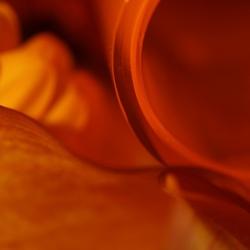 orange again ll