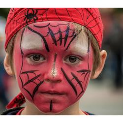 Spider.....