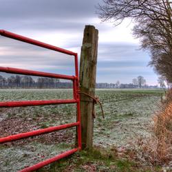 Rode hek