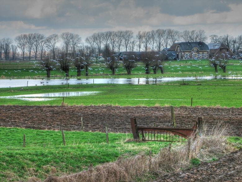 Rivierlandschap-02 - Ondergelopen landerijen langs de IJssel bij Doesburg.