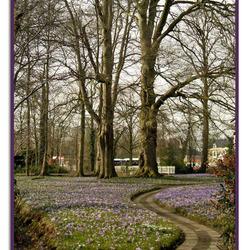 voorjaar op Landgoed Overcingel in Assen