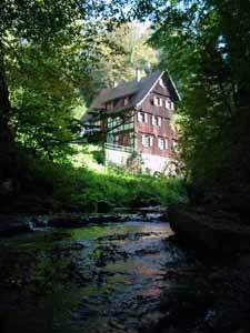 Bij Rudesheim (Dld) - Even IN het water...