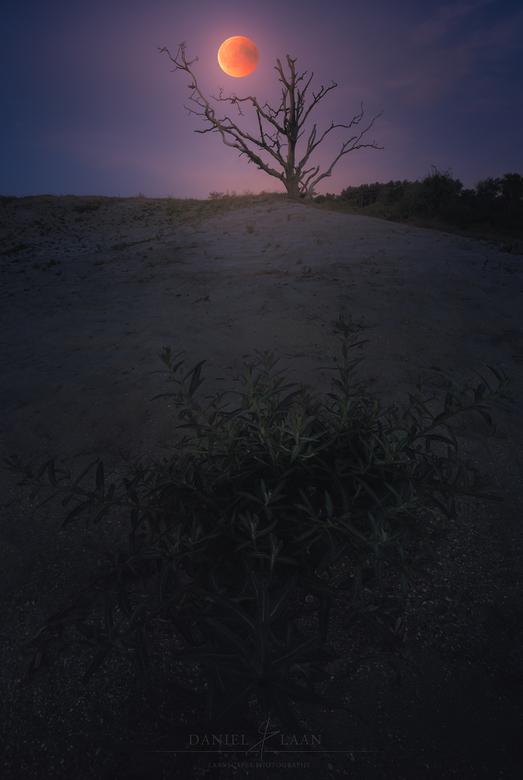 Blood on the Buckthorn - Maansverduistering (27 juli 2018) ~ Een samengesteld beeld van een groothoek opname en een tele opname op exact dezelfde plek