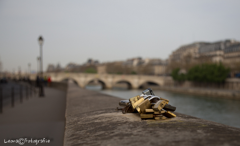 Liefde vastgeketend in Parijs - Le Pont Neuf op de achtergrond.