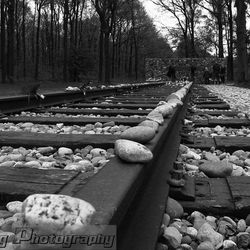 Kamp Westerbork 2