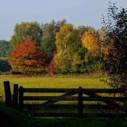 Prachtige herfst compositie