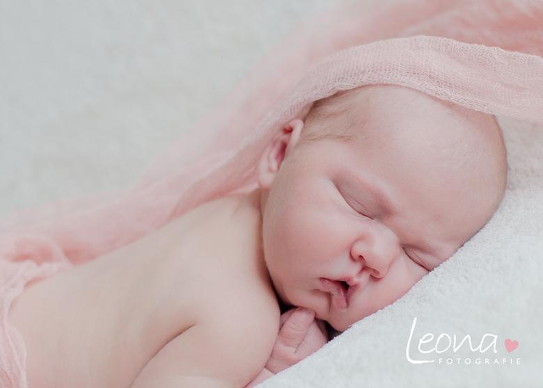 Linsey Joy - Ik ben dit jaar begonnen met Newborn en baby fotografie. Dit is een foto van mijn 2e shoot.