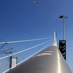 Bewerking: De Zwaan van Rotterdam