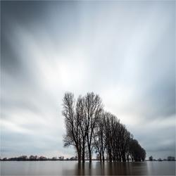 Rhein-Hochwasser [650]