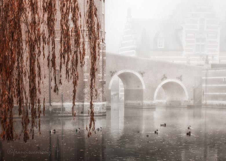 kasteel met mist