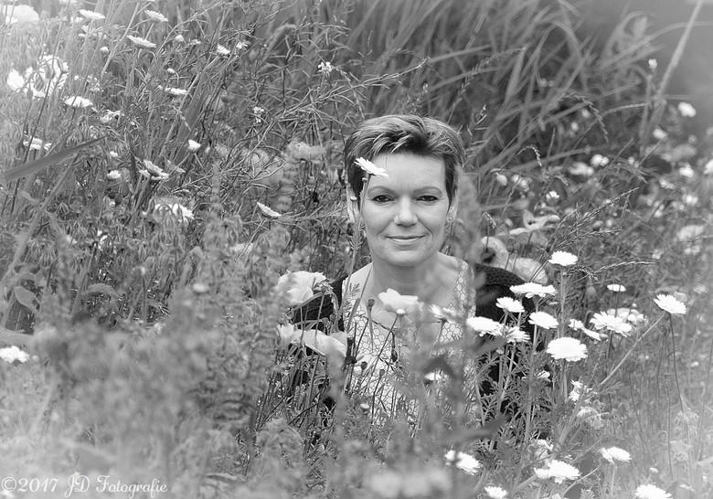 Petra in de veldbloemen -