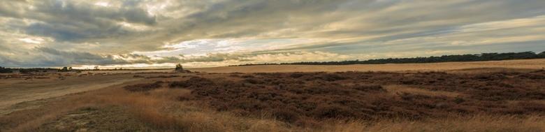 Panorama Hoge Veluwe - Panorama foto van de Hoge Veluwe.