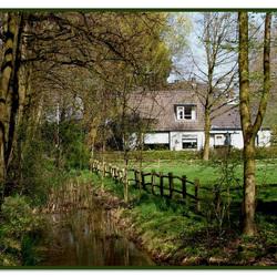 Voorjaar in Hemmen (Gld.)