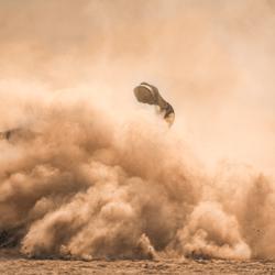 zebra neemt stofbad