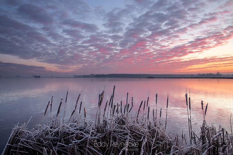 COLOR EXPLOSION - Prachtige wolkenpartijen en kleuren tijdens een koude zonsopkomst bij natuurgebied 't Roegwold in Groningen.