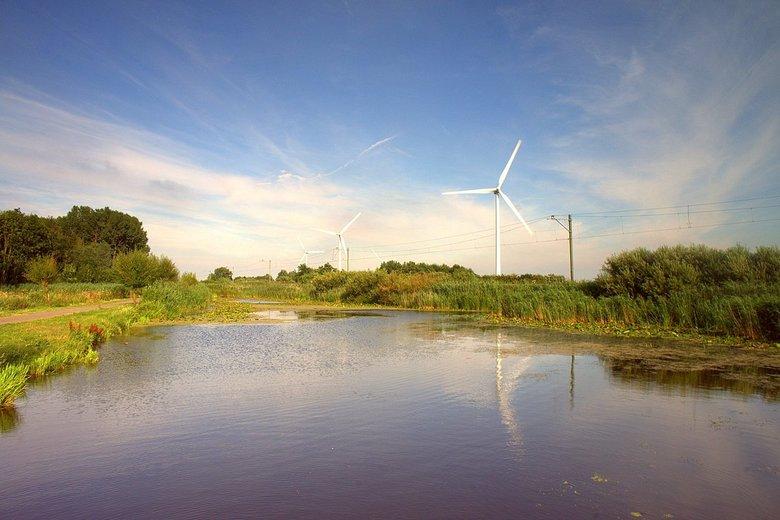 In de polder nr2 -