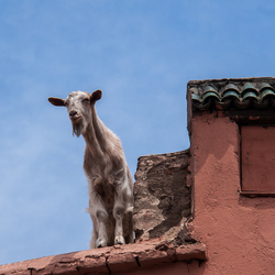 Maroc 10