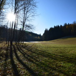 Herfst zon in Geising