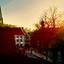 freiburg morning