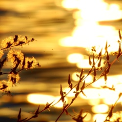 zonsondergang Garda meer
